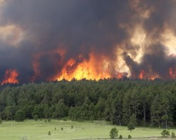 In 2015 wildfires have burned over 8 9 million acres of land in the United States
